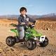 Детский электроквадроцикл Peg-Perego ED1165 Пег-Перего Corral Bearcat