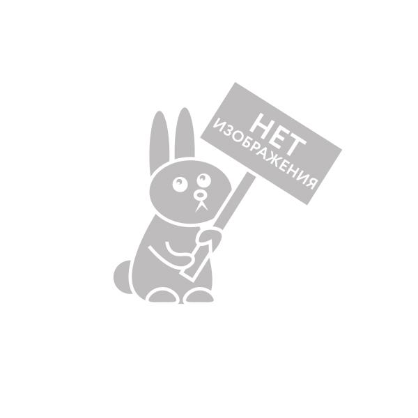Scruff a Luvs 30308S Мини- пушистик-потеряшка в переноске с погремушкой