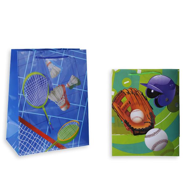 Пакет подарочный S8390 СПОРТ, 26х32х10 см, в ассортименте 2 вида пакет подарочный голография tz9495 32 45 11 6 цветов в ассортименте