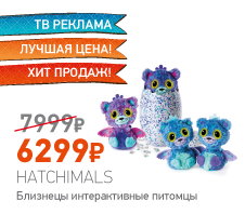 Hatchimals 19110-PURP Хетчималс сюрприз