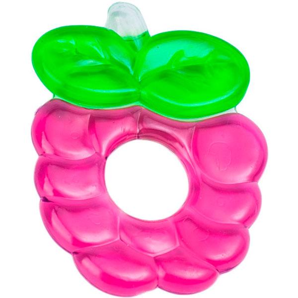Canpol babies 250930485 Прорезыватель водный охлаждающий, Fruits, фиолетовая ягодка, 0+