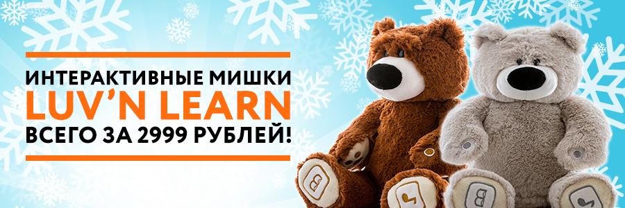 Bears_900x300_2.jpg