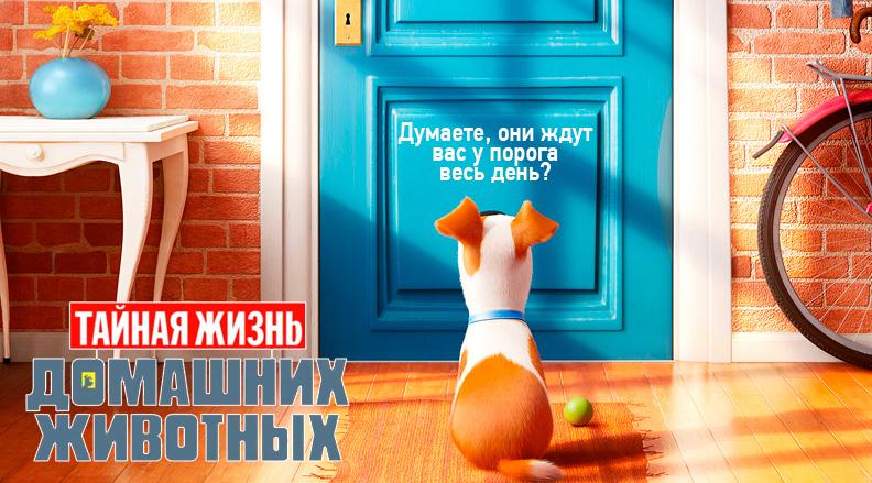 Мультфильм Тайная Жизнь домашних животных